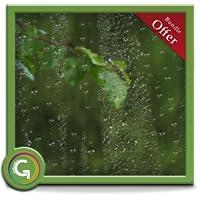 Greenish Rains HD - Set Romantic Rainy Scene on your TV Screen