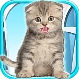 Best Beansprites LLC App Games - Talking Kitten - Play Time & Fun Games Review