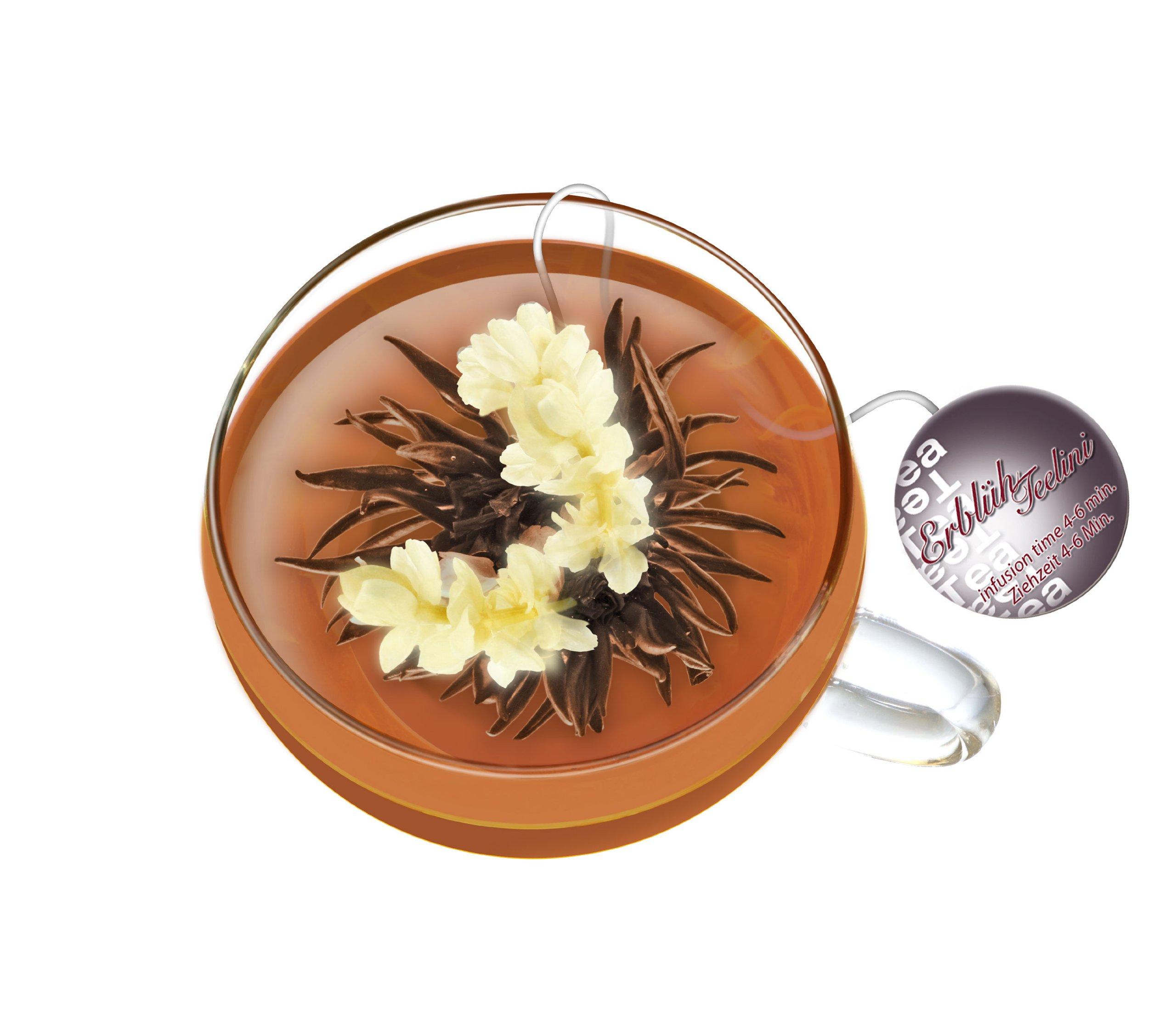 Creano-Teelini-Teeblumen-im-Tassenformat-Geschenkset-in-Teekiste-aus-Holz-12-ErblhTeelini-in-8-Sorten-Weier-Tee-Schwarzer-Tee