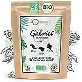 ORIGEENS CAFE GRAIN BIO 1kg   Café en Grain Arabica   Torréfaction Artisanale   Gabriel