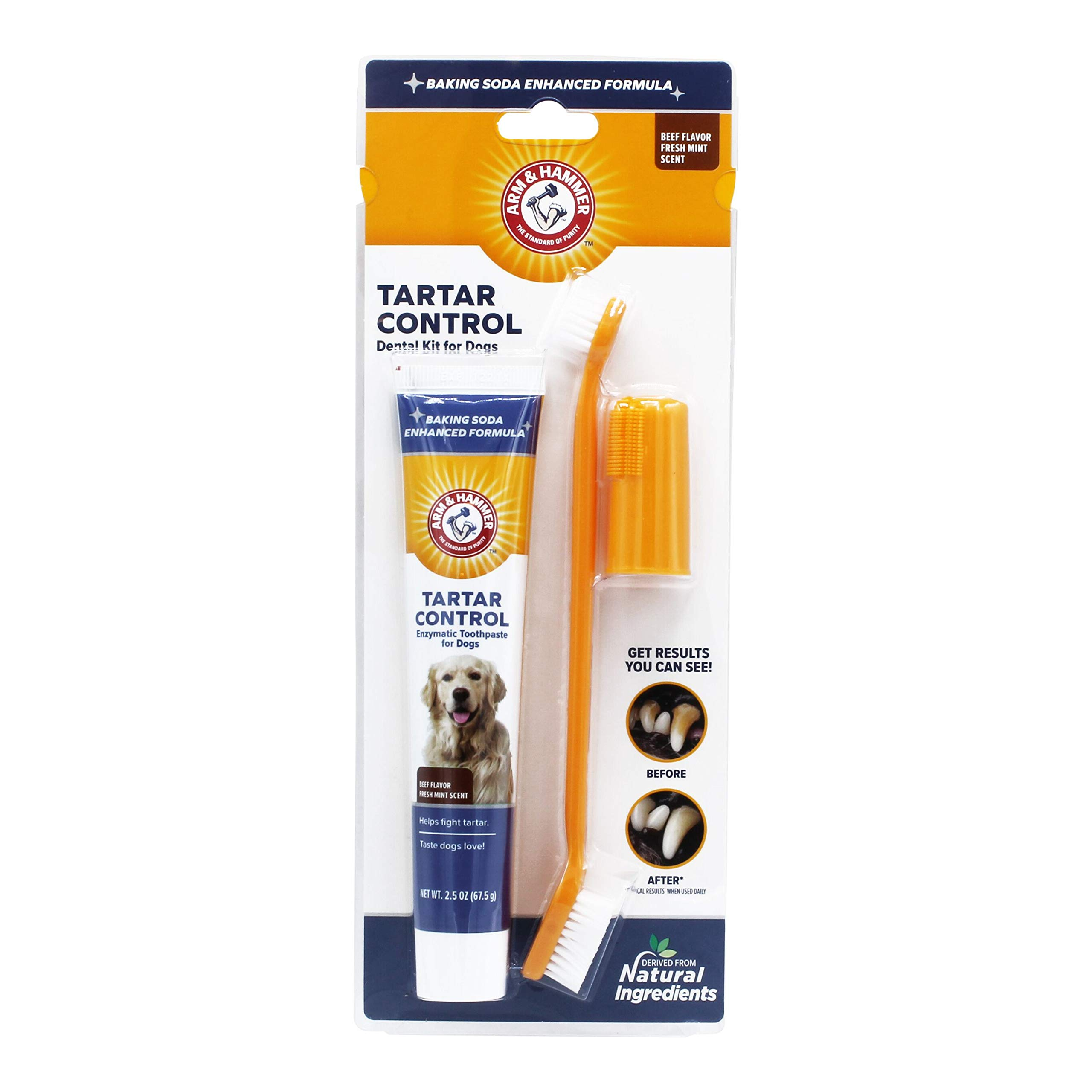 The Company of Animals ARM & HAMMER Paste & Brush Set Clear