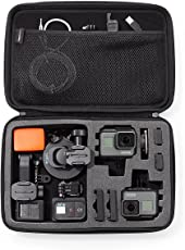 Basics Large Carrying Case for GO Pro and Other Action Cameras (Black)