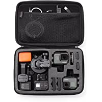 Viral commodities Basics Large Carrying Case for GO Pro and Action Cameras (Black)