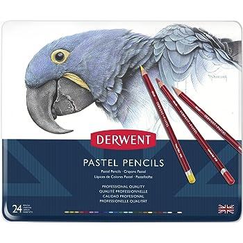 Derwent Pastel Pencils, Set of 24, Professional Quality, 32992, Multicolor