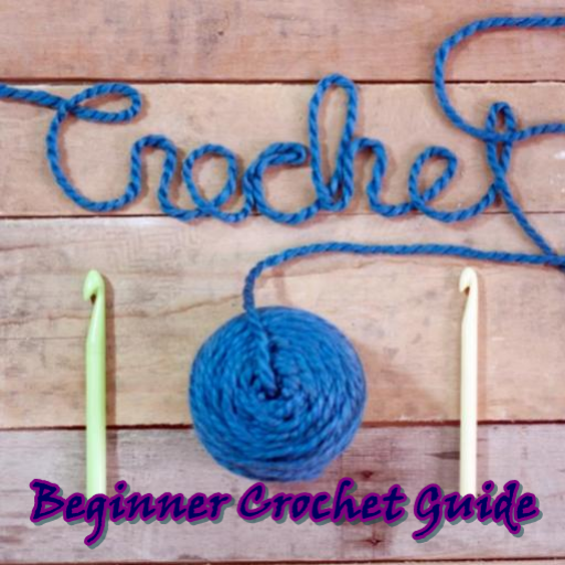 beginner crochet guide