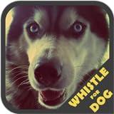 Hundepfeife Trainer
