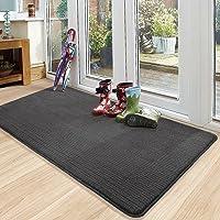 Color&Geometry Door Mat 50 X 80 Cm, Doormat Dirt Trapper Non-slip, Machine Washable, Soft, Absorbent Entrance Rug Floor…