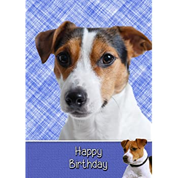 Jack Russell Birthday Card 8x55 Mix Match On 8x55 Cards