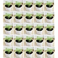 YUVAGREEN UV Treated Poly Grow Bags for Leafy Vegetable and Flower Plants (24x24x40 cm,White Outside, Black Inside) (5)