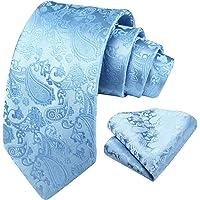 HISDERN Men's Paisley Ties Handkerchief Solid Color Necktie & Pocket Square Set for Wedding Party
