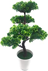 Bonsai Artificial Dwarf Tree ~ Artificial Plants With Pot And Grass Ideal For Home Décor. With Realistic Detailing Size - 46cm x 30cm (pot - 12 cm Height)