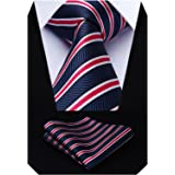 HISDERN Matrimonio a righe Cravatta Fazzoletto Cravatte da uomo & Pocket Square Set