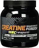 Olimp Creapure Monohydrat Pulver Creatine Creatin Muskelaufbau (1x500g)