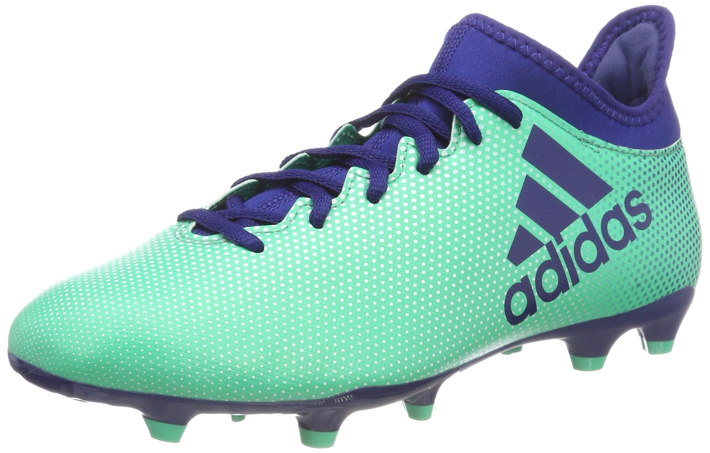 43650a2c2f58 adidas Men s X 17.3 Fg Footbal Shoes – Just Sports UK