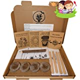 Kids gardening set, Grow your own kit for children, Wildflower seeds, Sunflower seeds to grow, Cress seeds, Pea Seeds…