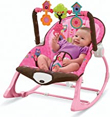 MousePotato Infant to Toddler Rocker Chair with Calming Vibrations, Metal Frame (Pink)