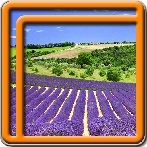 Lavendel Live Wallpapers
