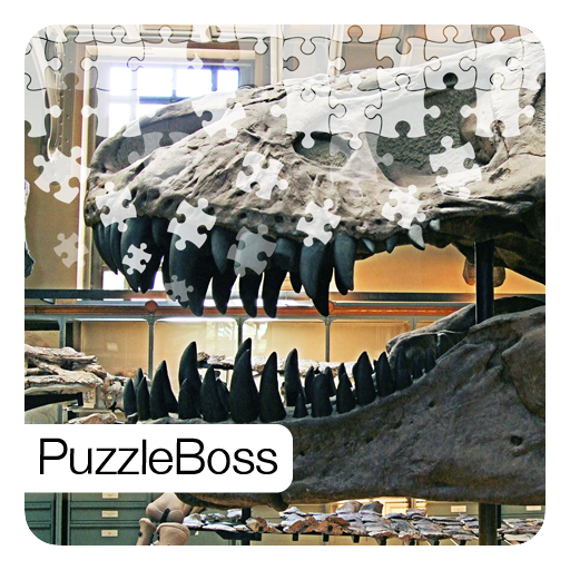 Dinosaur Fossils Jigsaw Puzzles
