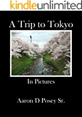 A Trip to Tokyo: In Pictures