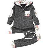 Baby Boy Girl Fashion Outfits Clothes Sets Hoodie Trouser & Tops Lovely Sweatshirt Gifts Set, 0-36 Months, 2pcs