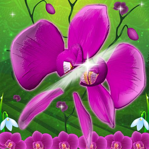 Beste Blume Slash (Slash Kinder Und)