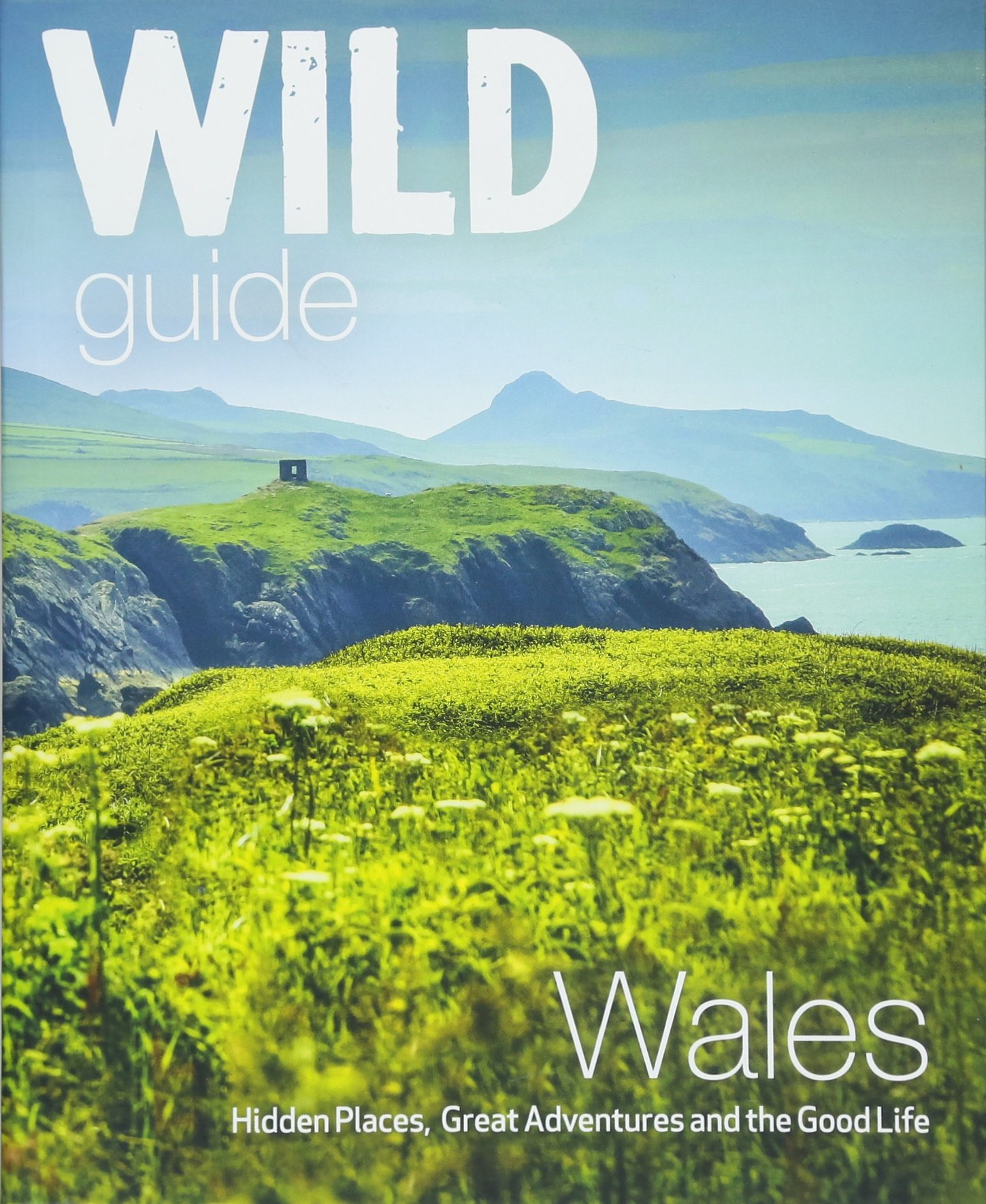 Wild Guide Wales and the Marches (Wild Guides) 1