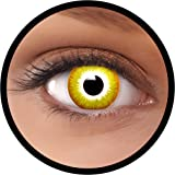 Farbige Kontaktlinsen gelb Avatar   Ideal für Halloween, Karneval, Fasching oder Fastnacht   Inklusive Behälter von FXEYEZ   Ohne Stärke als 2er Pack