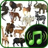 Echte Animal & Natural Bird Sounds