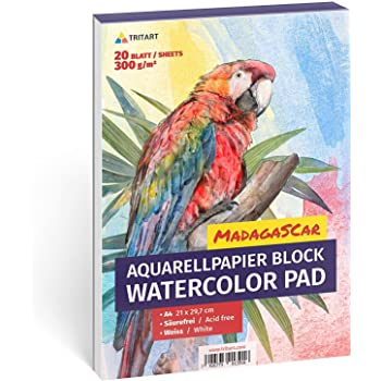 Aquarellpapier A2 42x60 Cm 300 Cm 100blatt Amazon De Kuche