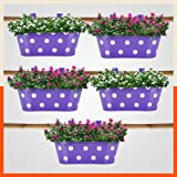 Patio by Bathla - ARA Hanging Metal Pot Holders / Planters for Balcony / Garden   Corrosion Resistant with Detachable Double