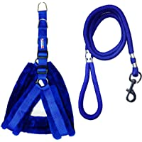 Petshop7 Nylon Dog Harness & Leash Rope Set with Fur 0.75 inch Small - (Chest Size - 23-28) (Blue)