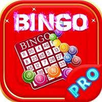Mega Casino Bingo Jackpot
