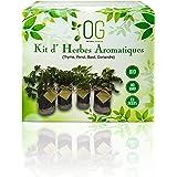 OG Huerto Urbano - Kit Completo de 4 Hierbas aromáticas (Tomillo, Cilantro, Albahaca y Perejil), 100% Semillas Bio, NO GMO y