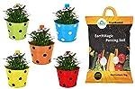 Trust Basket Single Pot Railing Planter and Trust Basket Enriched Organic Earth Magic Potting Soil Fertilizer for Plants...