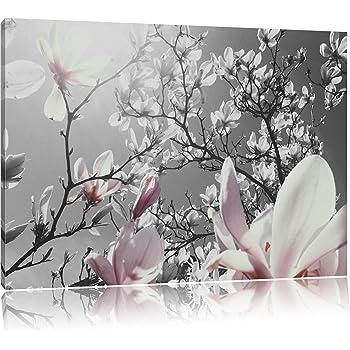 sch ne magnolie bl ten schwarz wei format. Black Bedroom Furniture Sets. Home Design Ideas