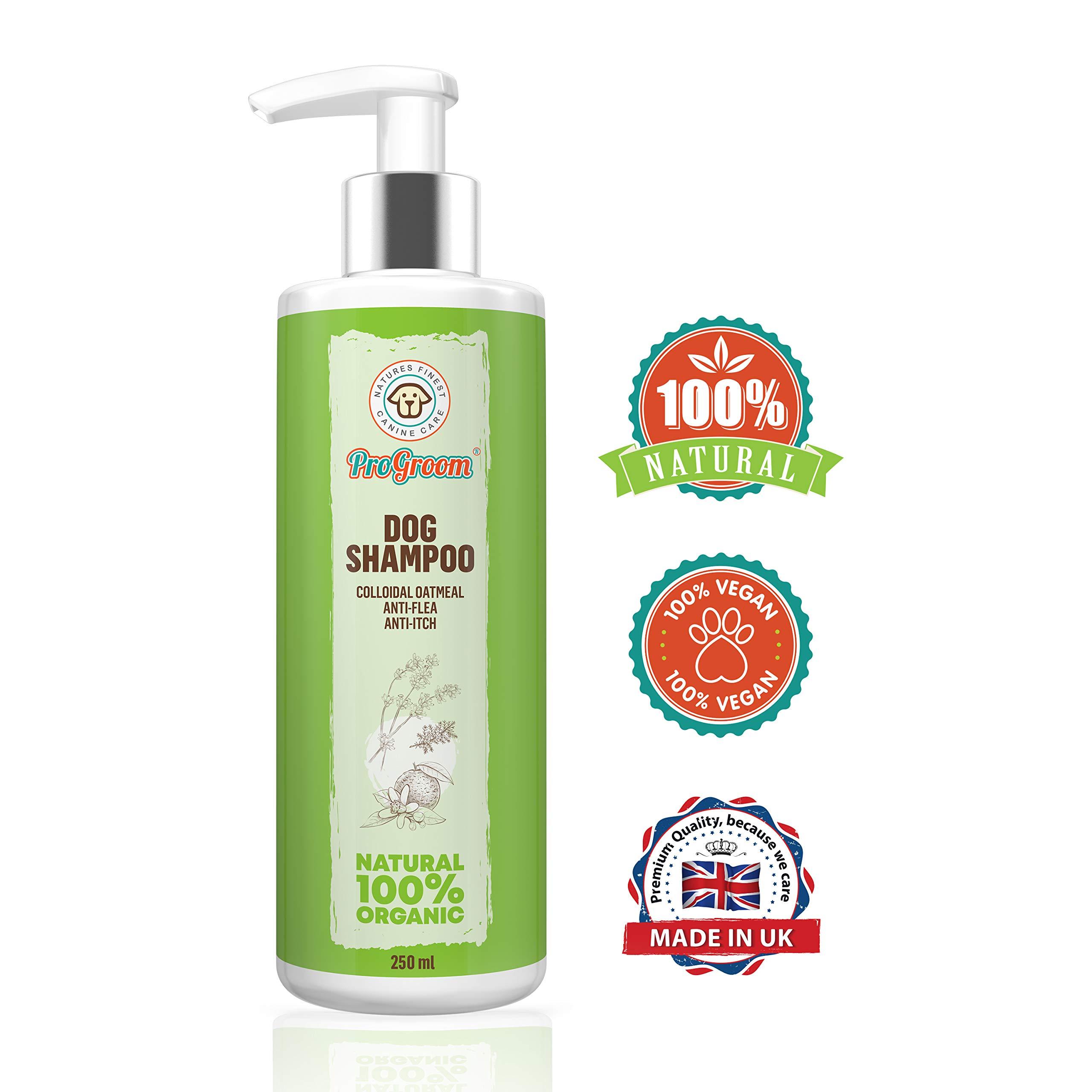 progroom Oatmeal Dog Shampoo Natural and Organic – Puppy Shampoo and Itchy Skin Formula – Grooming Puppy Sensitive…