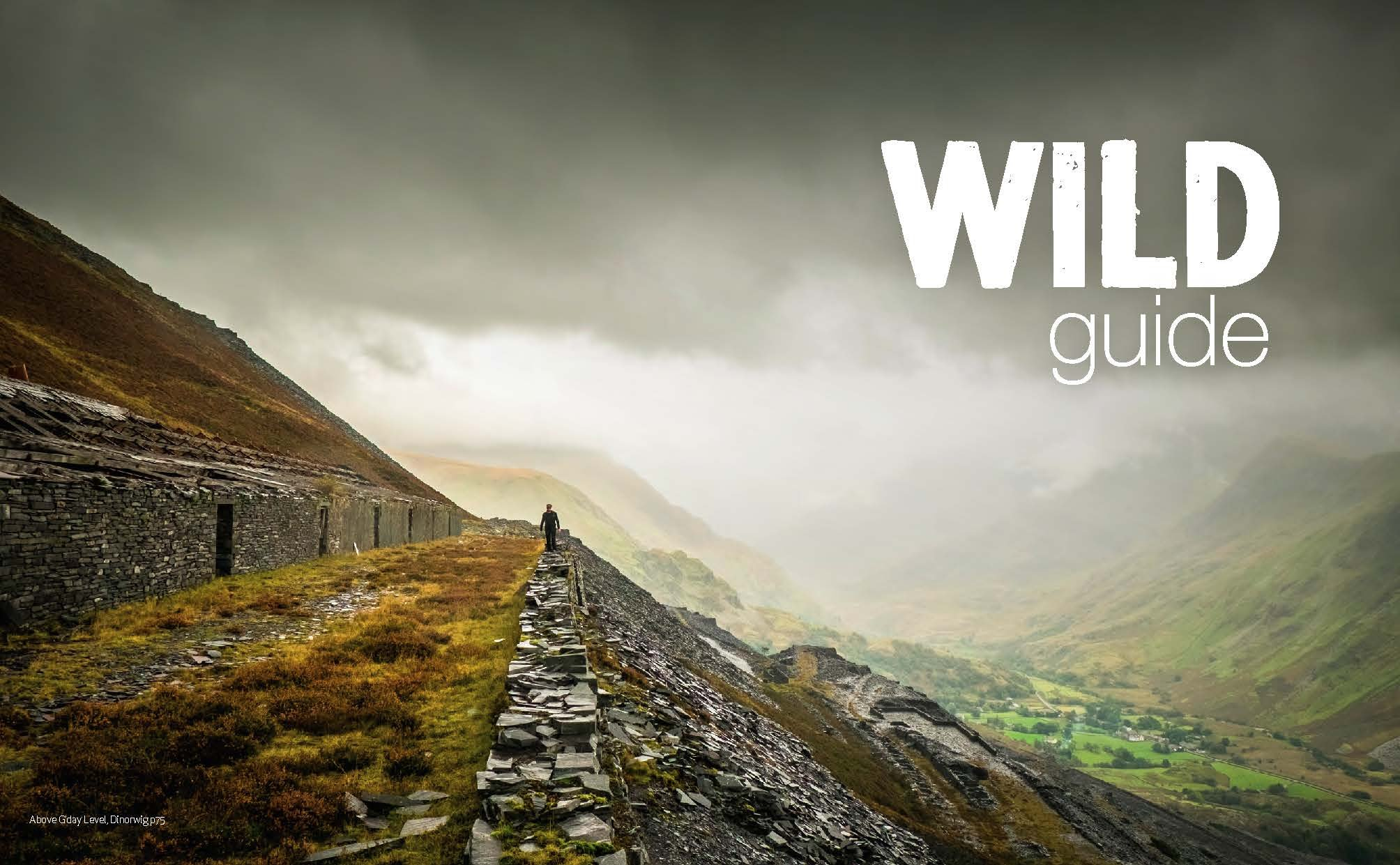 Wild Guide Wales and the Marches (Wild Guides) 3