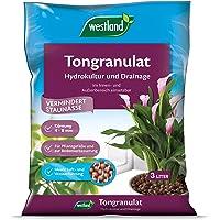 Westland Tongranulat, Hydroton, 734749, 3 L