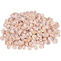 Vardhman Sea Shells Shankh 450 GMS Pack Used in Aquariums, Art and Crafts, Table Decoration (3 x 2 x 1.5 cm) 370 Pieces