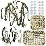 PietyPet 25 Piezas Reptiles Lagartija Decoración del hábitat, 2 Dragon BarbudoHamaca Hamaca Reptilcon Enredaderas Artificia