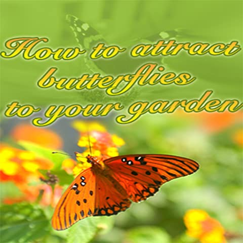 How To Attract Butterflies To Your Gardens - Discover How Can Dramatically Increase The Number of Butterflies That Linger Around Your Beautiful