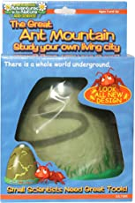 Maxitronix The Great Ant Mountain, Multi Color