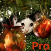 Advent Calendar, Christmas Cats Pro