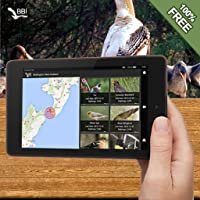 World Bird Guide