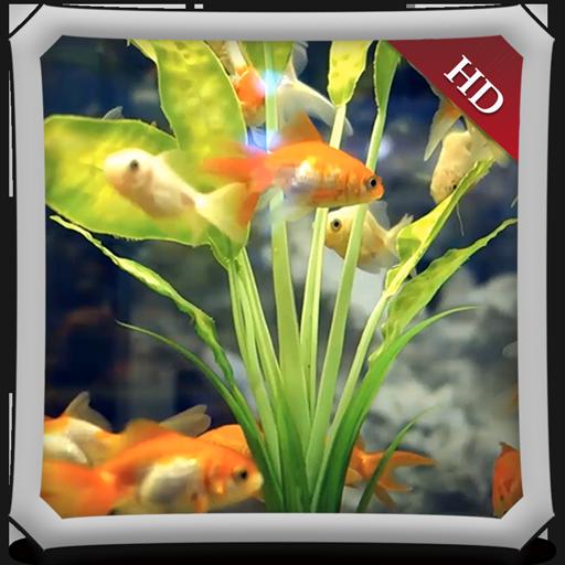 Happy Aquarium HD - Wallpaper & Themes (Fish Tank Kostenlos)