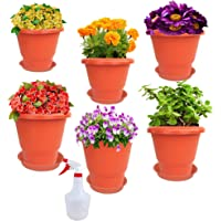 RED WIND Garden Balcony_ Size 10 Inch_ Flowering Planter_Pack of 6_ Terracotta Color_with Bottom Tray and Spray Water…
