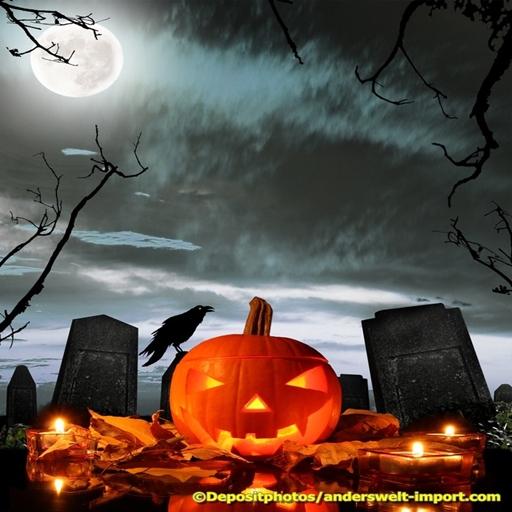Halloween Info - Halloween Sorcieres