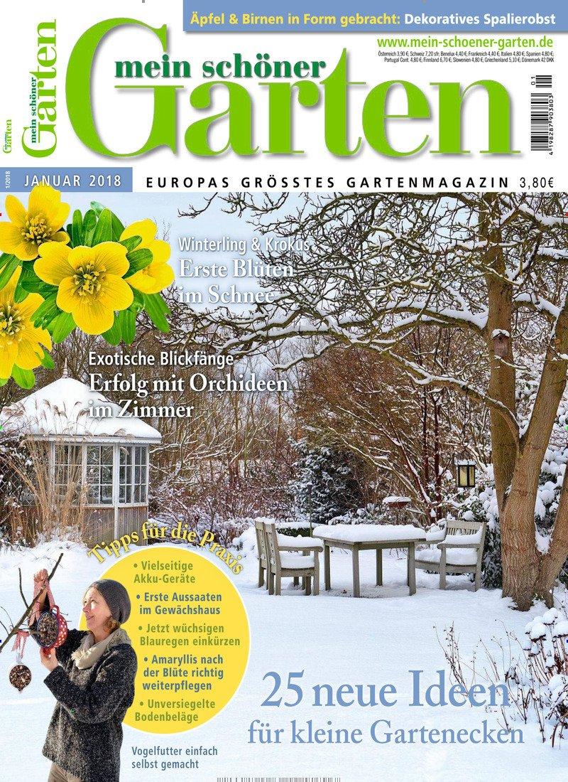 Mein schöner Garten: Amazon.de: Zeitschriften