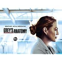 Grey's Anatomy - Season 17 [OmU]