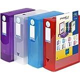 Viquel - Lot de 4 boites de classement en plastique - Lot 4 boites à archive personnalisables - Boites de rangement grande ca